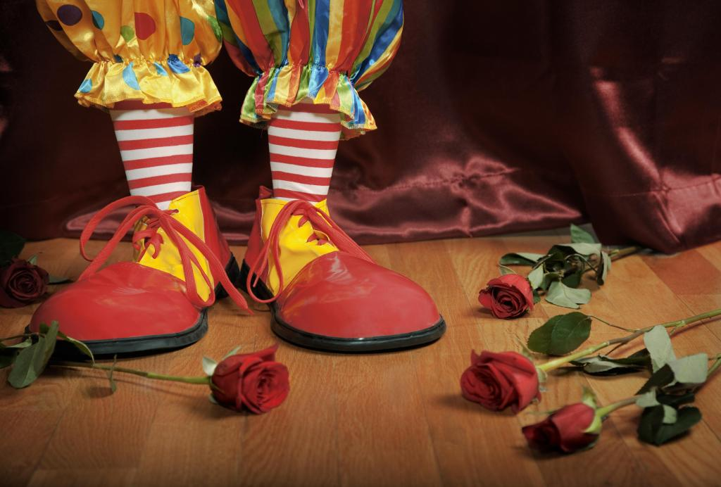 Clown feet with roses