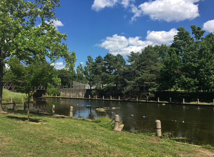 Public park along the historical canal, Cuyahoga Valley National Park, Akron, Ohio, USA