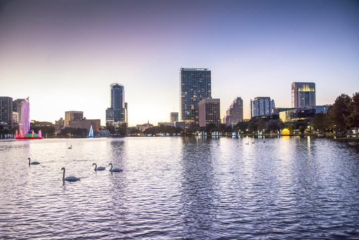 Florida, Orlando, Lake Eola, Lake Eola Park, Royal Mute Swans