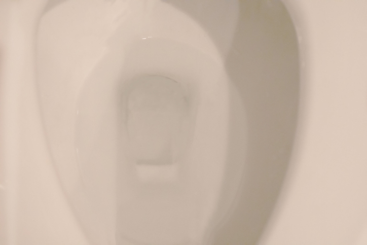 close-up of clean toilet bowl